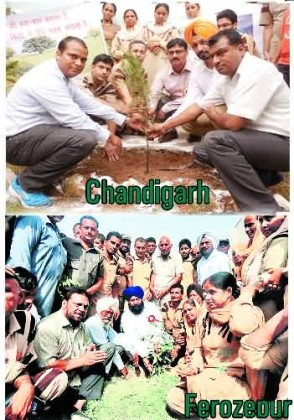 Save Environment , Campaign