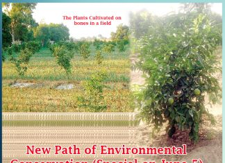 Charity with Bones New Path of Environmental Conservation (Special on June 5) Sachi Shiksha