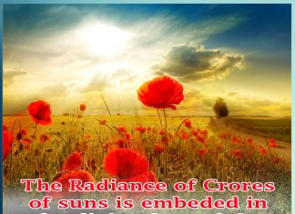 The Radiance of crores of suns is embeded in the divine face of the Spiritual Guide.