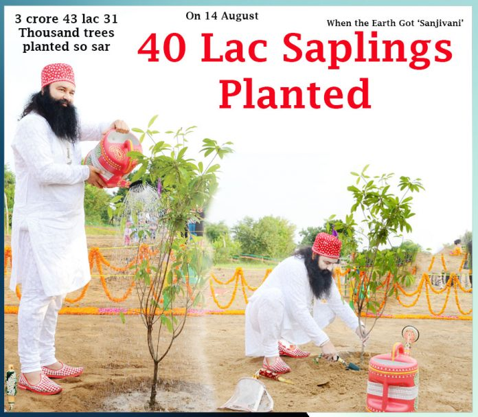 40 lac saplings planted ,On 14 August