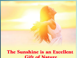 The Sunshine is an Excellent Gift of Nature