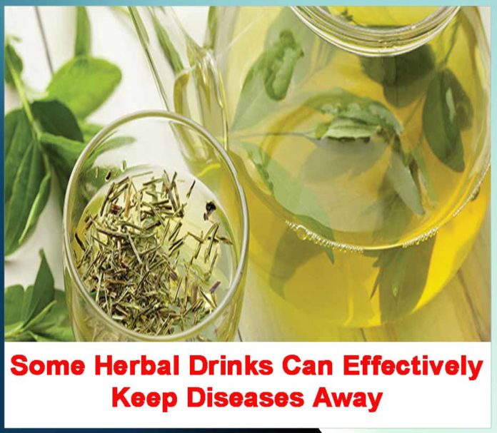 Some Herbal Drinks Can Effectively Keep Diseases Away - Sachi Shiksha