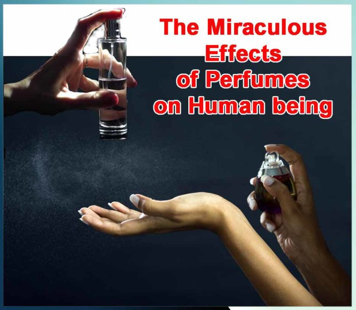 The Miraculous Effects of Perfumes on Human being - Sachi Shiksha