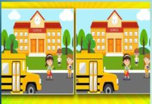 Puzzles & Find the Difference - Sachi Shiksha