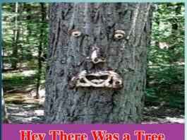 Hey There Was a Tree