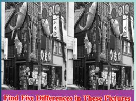 find the difference between two pictures - Sachi Shiksha