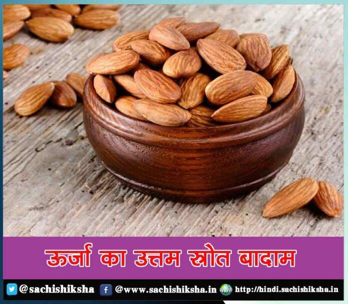 How To Make Palak Saag Recipe at Home - Sachi Shiksha