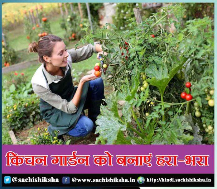 make this the best ever diwali - Sachi Shiksha
