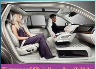 Humans and Their Luxurious Vehicles - Sachi Shiksha
