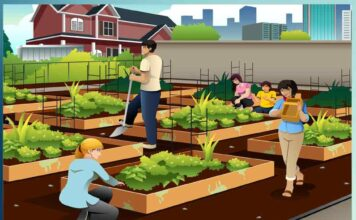 advantages of vertical farming - Sachi Shiksha